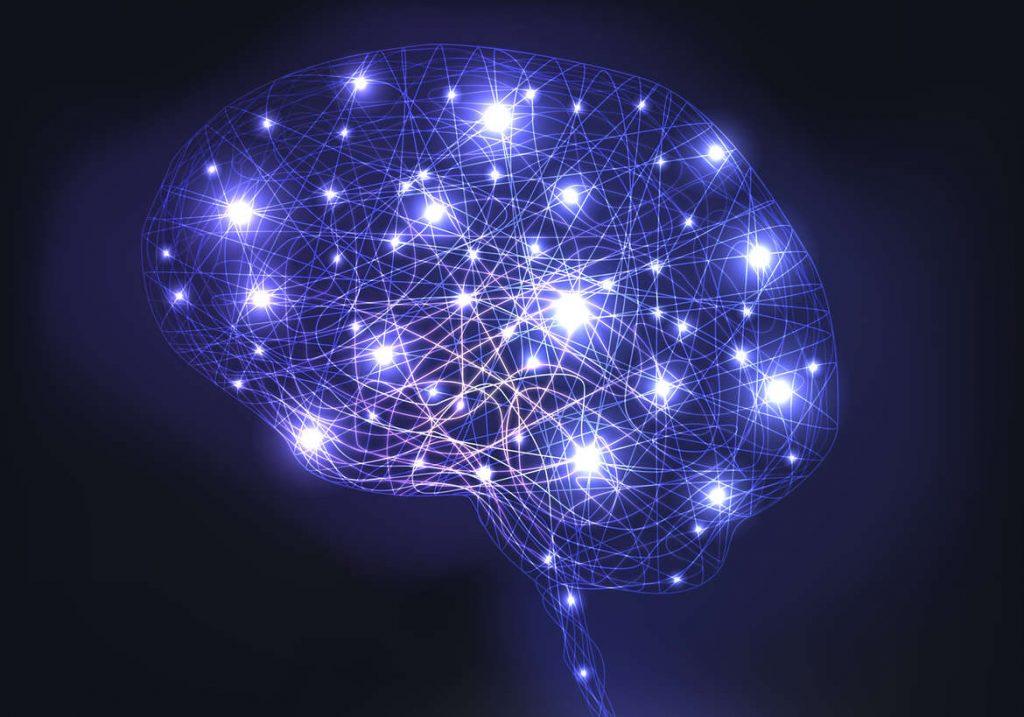 cerveau naturopathie